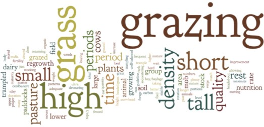 This word picture is a look at how people describe mob grazing. The large the work, the more often it is used in the description.