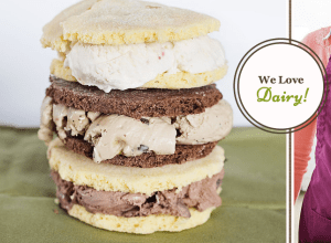 A Prigel Creamery ice cream sandwich stack.  Yum!