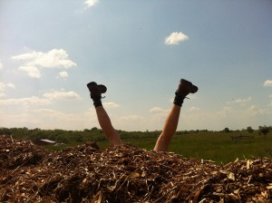 Landing on your head in a huge pile of wood chips.  Risk Level: Public Humiliation