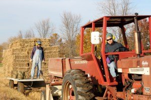 Baling switchgrass at Meach Cove Farm