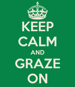 keep-calm-and-graze-on-2