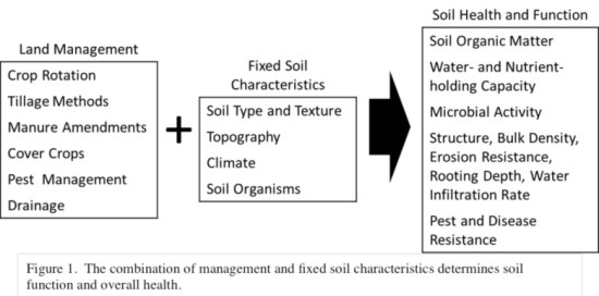 SoilHealthFunction