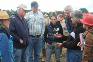 Course participants learn about prairie and pasture species. (Photo by Sylvia Kantor)