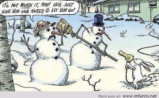 Funny-winter-joke-2014