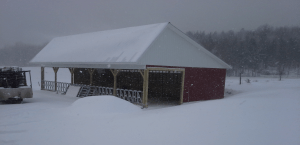 November 2014 in Vermont. Snow falls on Spud's new heifer barn. Just a taste of the winter to come.