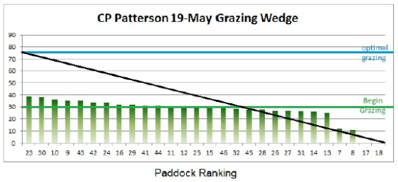 May 19 Grazing Wedge
