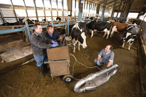 Left to right, Pennsylvania State University agricultural engineer Michael Hile, ARS agricultural engineer Al Rotz, and ARS research associate Felipe Montes use a dynamic flux chamber to measure the emission rates of gaseous compounds from manure on a dairy barn floor.