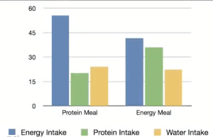 This graph shows the results of one of the experiments folks at USU did to see how good animals were at mixing their diets. The three bars on the left show how much energy (blue), protein (green), and water a group of sheep ate when they were first given a meal of a protein rich food.  You can see they ate a lot more of the energy food and not so much protein. The three bars on the right show what a group of sheep chose after getting a meal high in energy. They ate a lot more protein, and not quite as much of the foods high in energy.