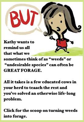 KathySaysWeedsAreForage
