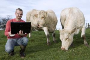Online dating for cattle?