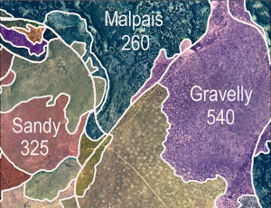 "Final ecological-state map designations with an example of coding. The three-number code within an ecological-state area means that there is more than one ecological state within that area. Each number represents one ecological state, and the numbers are listed in order of the extent of the ecological state within that area. For instance, ""Gravelly 540"" means that the area is characterized by a gravelly ecological state, 5 means that much of the site is covered with expanded shrublands/woodlands, 4 means that some of the site is shrub-dominated, and 0 indicates that this site does not have a third ecological state category."