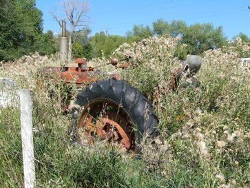 Bills Tractor. Photo by Kathy Voth