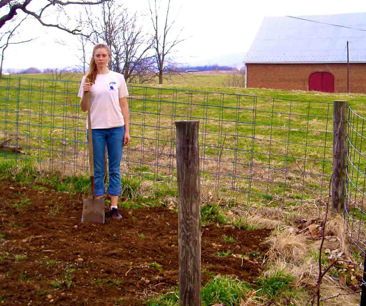 How To Start Your Own Farm « On Pasture