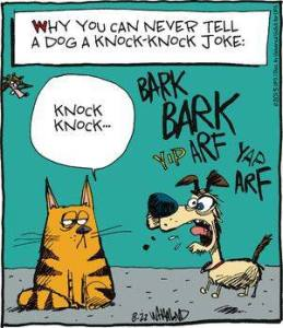 CatDogKnockKnockJoke