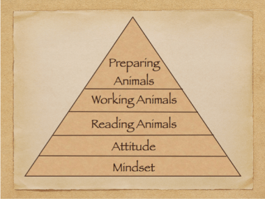 We're working our way up the pyramid of skills you need to become a good low-stress livestock handler. With mindset and attitude you're starting with a strong foundation.