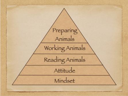 Pyramid of LSLH Principles