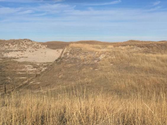 Sand Hills blow out healing 1