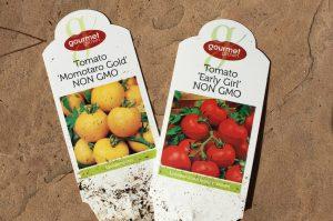 NON GMO Tomatoes