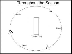 Throughout-the-Season-300x225