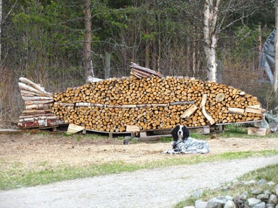 creative-wood-pile-stacking-art-23-58185665cf459__605