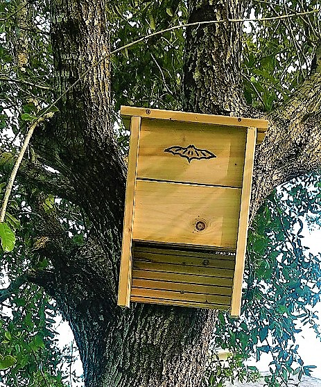 (Video) Bat House / Box installation by James in Palm Bay…(Part 1& 2)