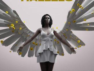 Hallelu CD 1 TRACK 1 128 mp3 image 768x768 1