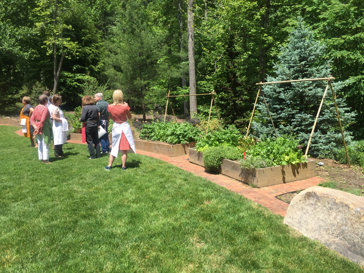 The Love's garden
