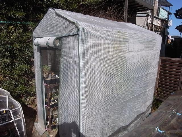 我が家の簡易ビニールハウスと加温器