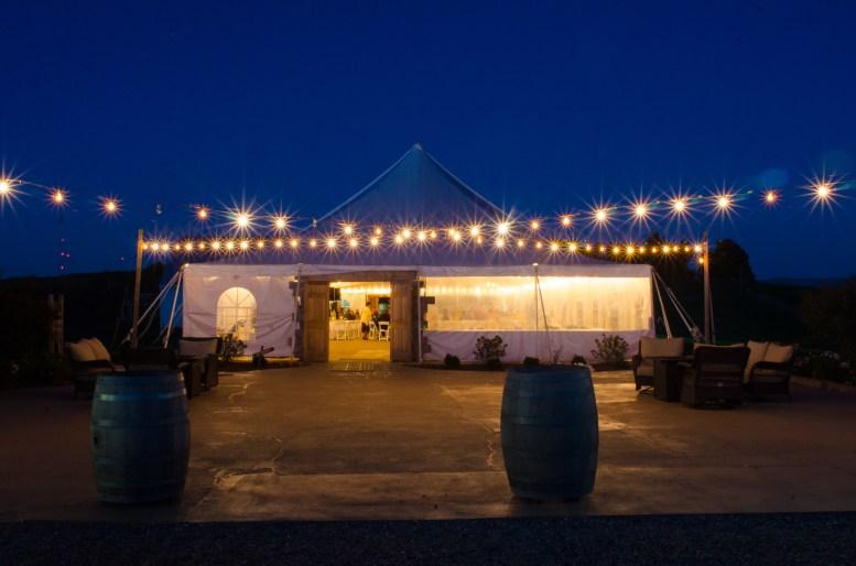 Mary + Patrick Wedding On Sunny Slope Farm Wedding Venue by Feather & Oak Photography (31 of 31)
