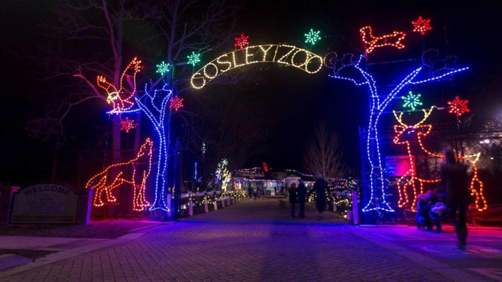 Cosley Zoo Lights
