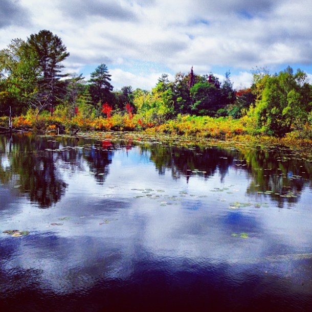 chelaw44 Fall has arrived bobcaygeon