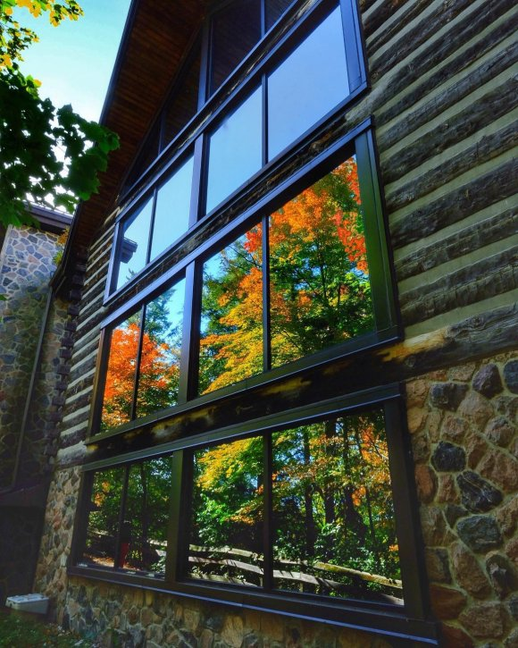fall colour in the forest is reflected in the large windows at McMichael Canadian Art Collection