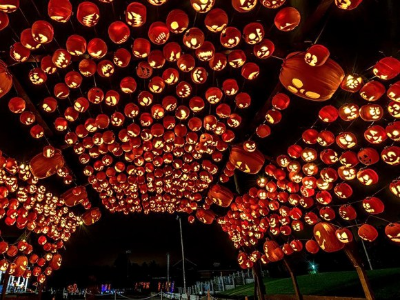 a tunnel made of lit up carved pumpkins