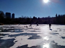 Pond Hockey in progress.