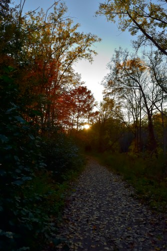 Sun sets over the trail.