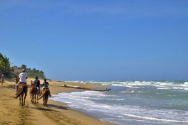 A lazy horse ride in paradise.