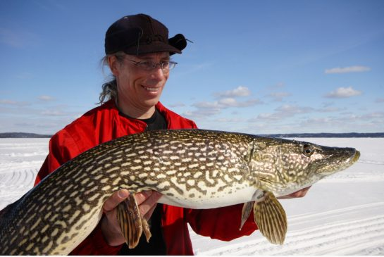 northern-pike.jpg.size.xxlarge.letterbox