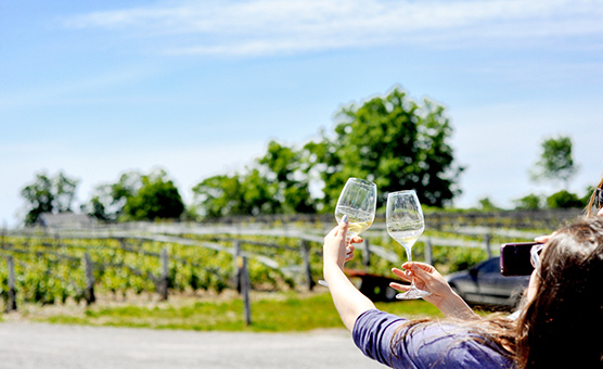 OZC Prince Edward County Wine Tour 2019 - New Route! @ Port Hope OnRoute Station | Campbellcroft | Ontario | Canada