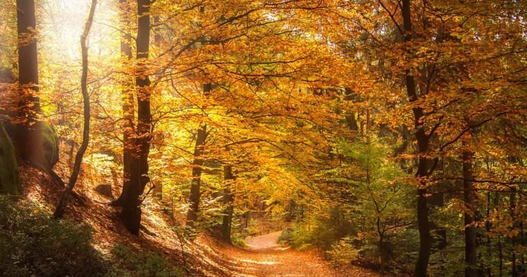 Mediteren in de natuur – tips per natuurgebied en seizoen