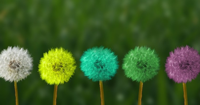 Mindfulness in het dagelijks leven – 10 kenmerken van mensen die mindful leven
