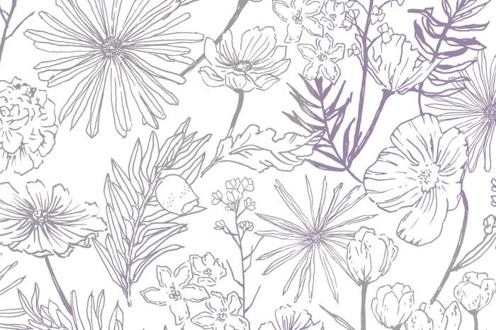 畫圖配色沒靈感?四季盛開的日本傳統色推薦