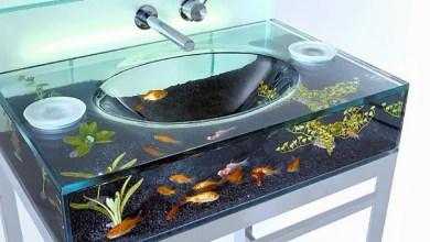 شاهدي صور لأحواض أسماك غريبة ولكنها تزيد من جمال بيتك