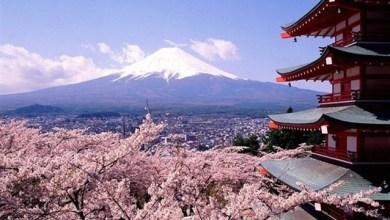 اليابان أفضل الأماكن السياحية في العالم تستحق الزيارة للأستمتاع بعطلة جميلة