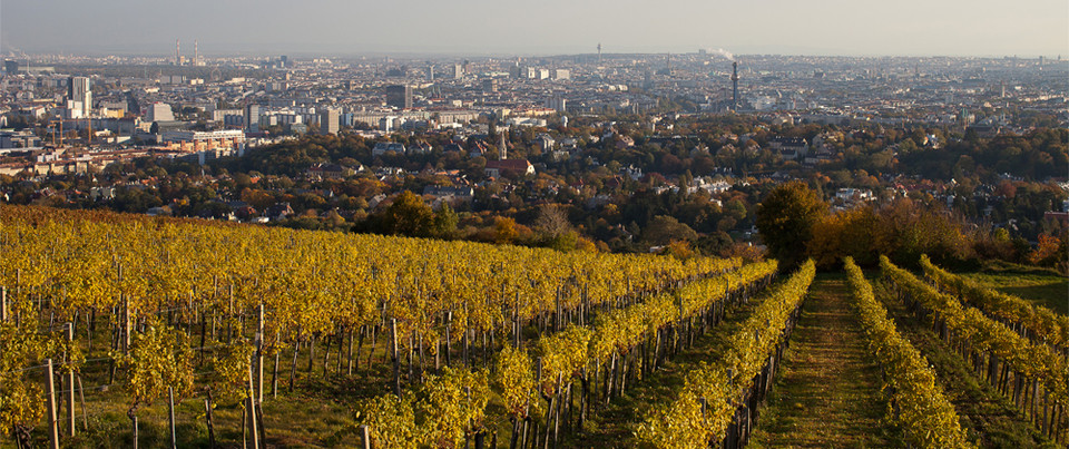 Panorámica de la ciudad desde Rotes-Haus eam Nussberg