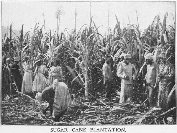 slaveryinJamaica-600x451