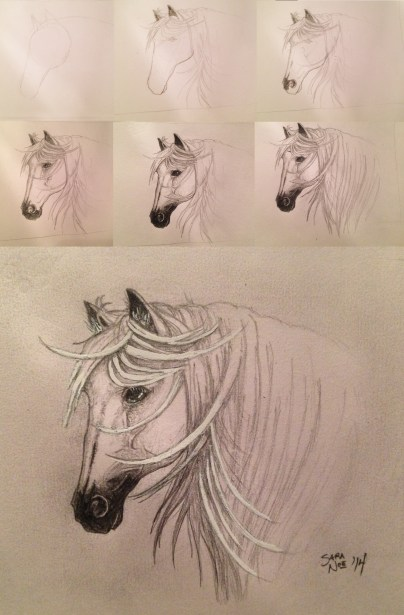 2014 Paw Paw's Gift Sketches