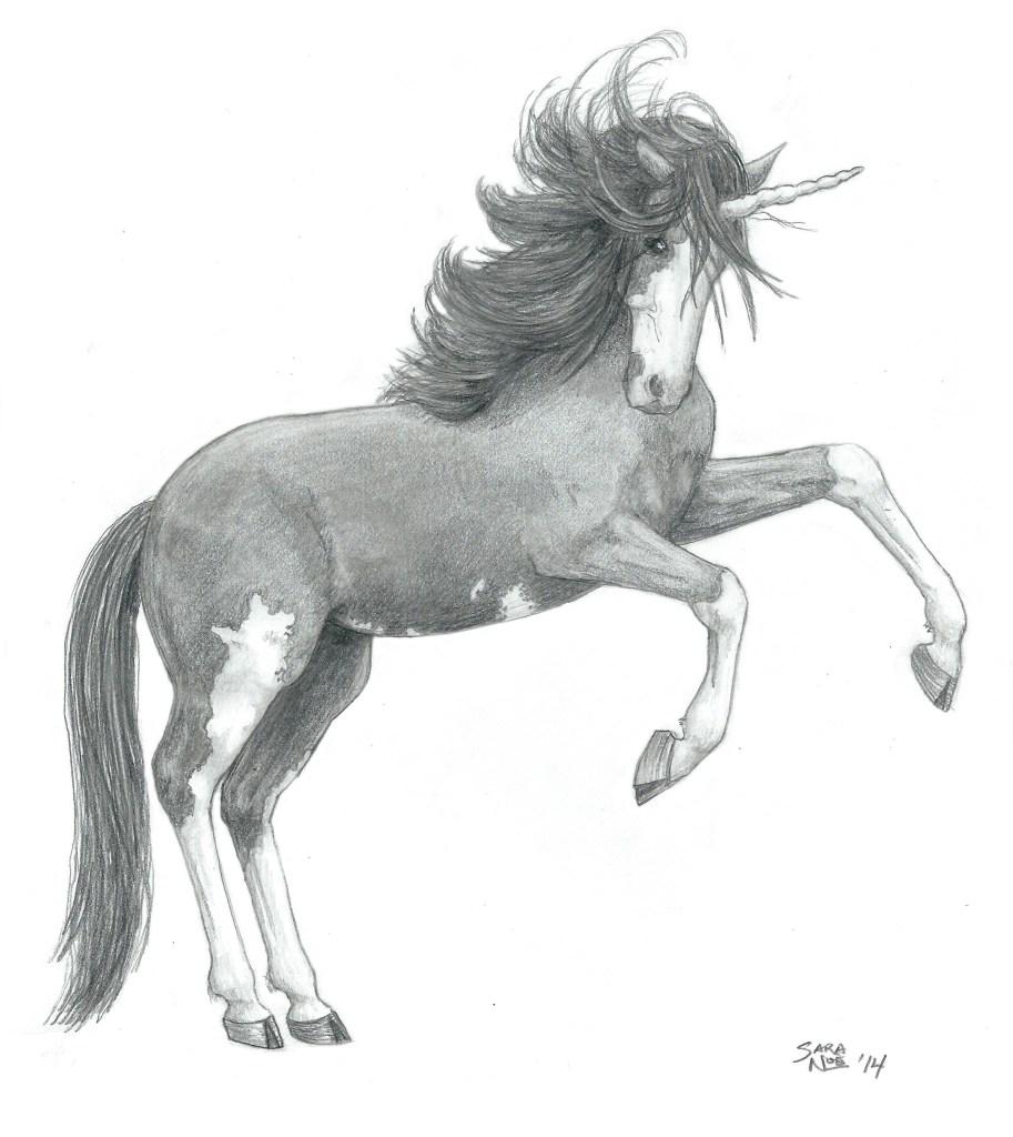 Unicorn Chronicles of Avilesor pencil artwork horse Sara A. Noe