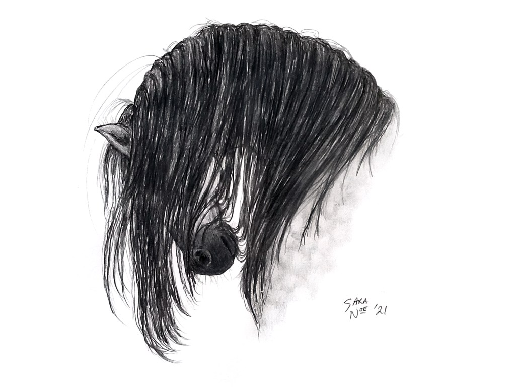 """Bow"" horse pencil sketch by Sara A. Noë"