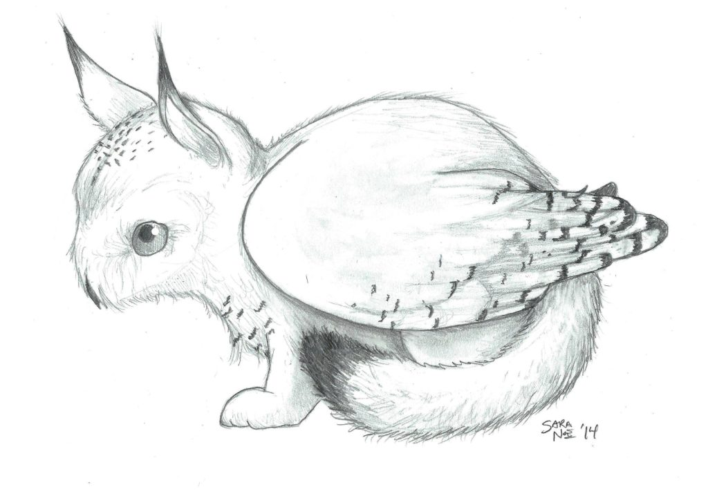 Owl cat pencil sketch owling from the Chronicles of Avilesor: War of the Realms series pencil sketch by Sara A. Noe