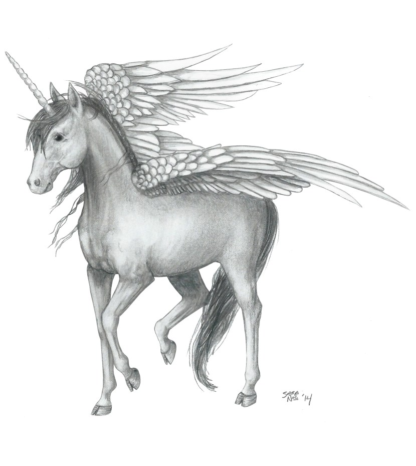 Winged unicorn valdenar from Chronicles of Avilesor: War of the Realms pencil sketch by Sara A. Noe